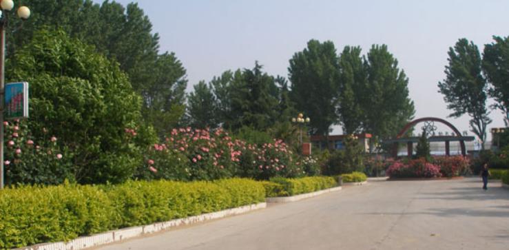 2019年湖南信息职业技术学院开设专业及招生专业目录表