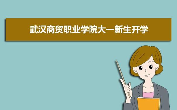 武汉商贸职业学院是几本学校,是一本还是二本有专科吗