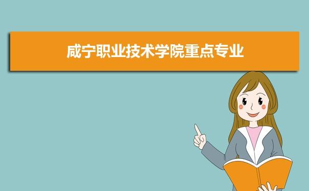 咸宁职业技术学院是几本学校,是一本还是二本有专科吗