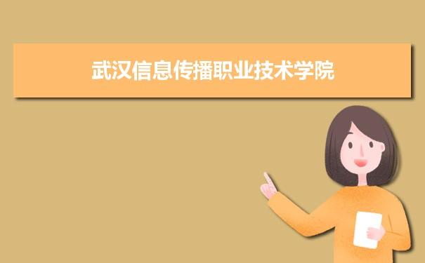 武汉信息传播职业技术学院招生录取规则和录取条件顺序政策解读2022参考
