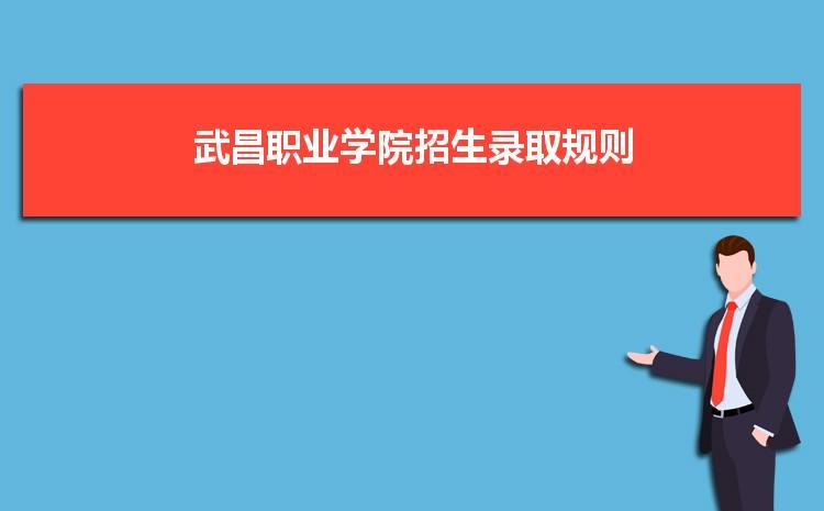 武昌职业学院招生录取规则和录取条件顺序政策解读2022参考