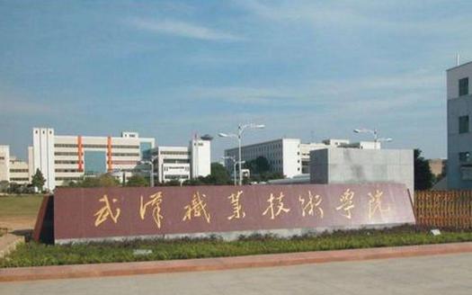 2019武汉职业技术学院有哪些专业,好的重点王牌专业排名