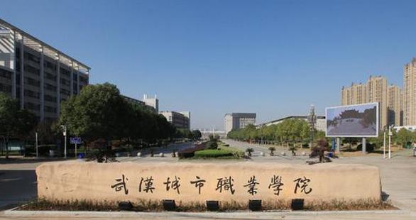2019武汉城市职业学院有哪些专业,好的重点王牌专业排名