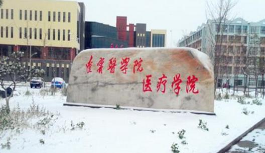 2020年锦州医科大学医疗学院开设专业及招生专业目录表