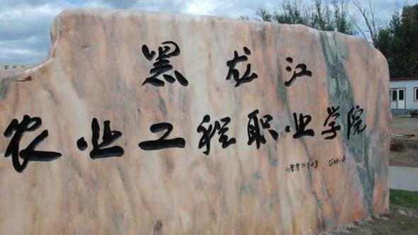 2019年黑龙江农业工程职业学院开设专业及招生专业目录表