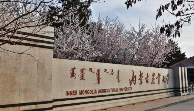 內蒙古本科大學名單及排名,2019年內蒙古十大本科大學排名榜