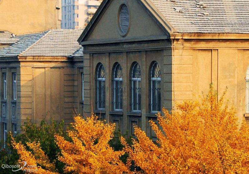 2019年潍坊医学院专业排名及最好的专业排名