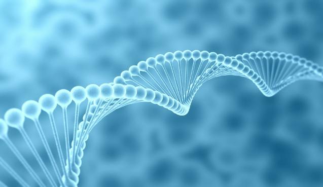 生物医学专业未来就业前景和就业方向分析(6篇)