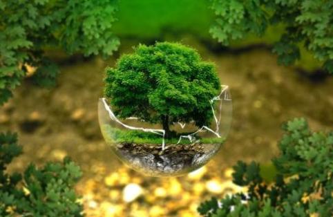 2019年生态学专业就业方向和就业前景分析(3篇)
