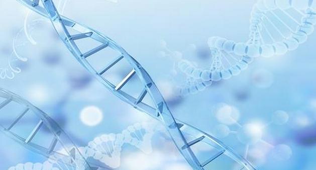 2019年生物医学工程专业就业方向和就业前景分析(3篇)