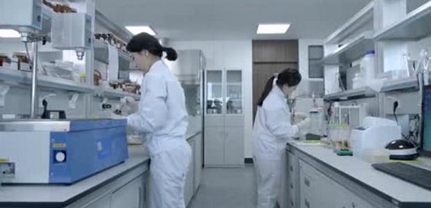 2019年食品科学与工程专业就业方向和就业前景分析(3篇)