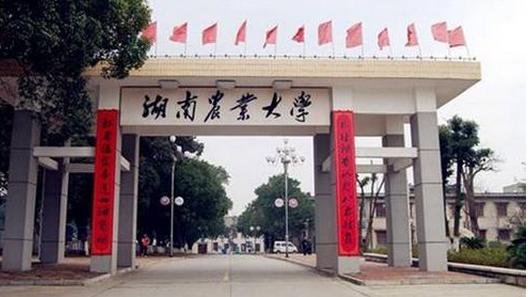 湖南农业大学最新排名 2021湖南农业大学排名第151名